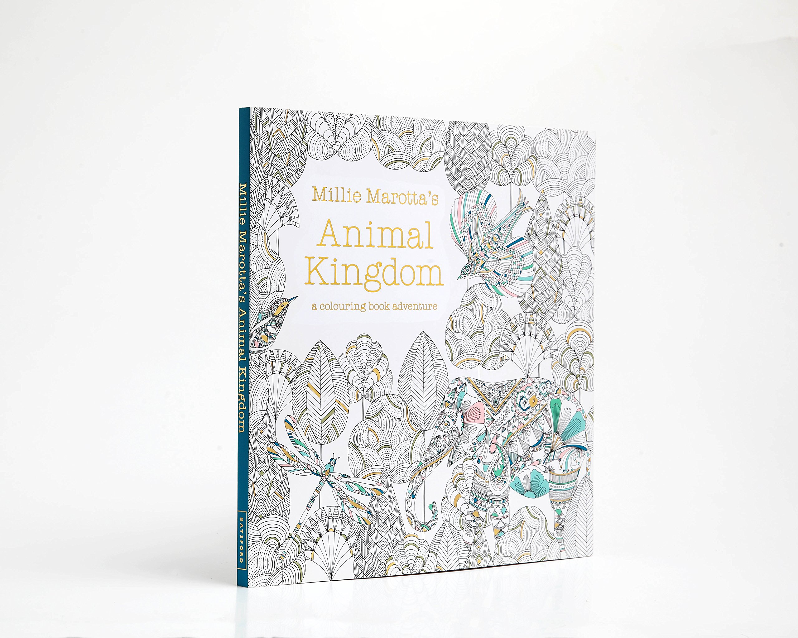 Millie marotta inspirational adult colouring book stress Colouring books for adults ebay